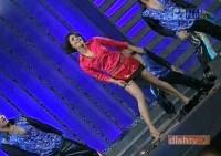 Priyanka Stage (9)