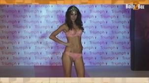 Triumph_016
