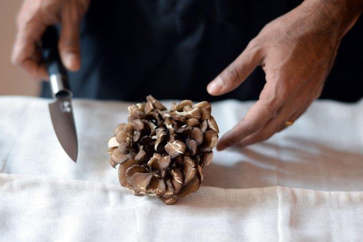 mushroom-food-photography