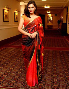 Lisa Ray - hope sareeslider
