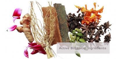 Ayurveda Makes Arya Essentials Oils A Success