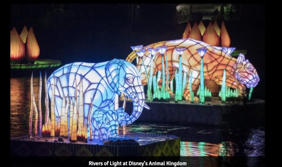 Rivers of Light is an all-new nighttime show at Disney's Animal Kingdom at Walt Disney World Resort. Rich in symbolism and storytelling, the elaborate theatrical production takes guests on a breathtaking emotional journey -- a visual mix of water, fire, nature and light all choreographed to an original musical score. Rivers of Light will be performed on select nights. (David Roark, photographer)