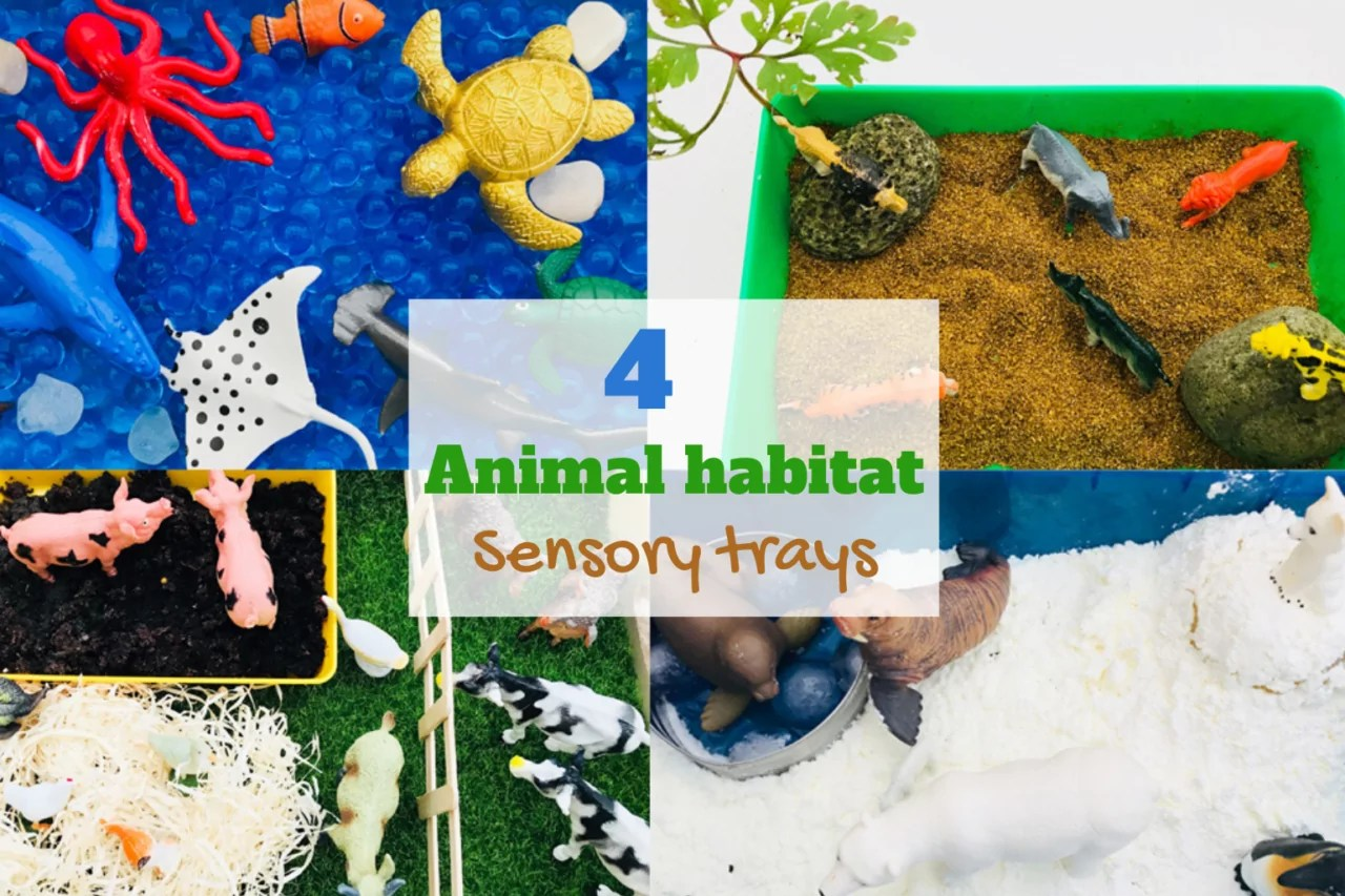 4 Easy Animal Habitat Sensory Trays Playtime Learning Mas Pas