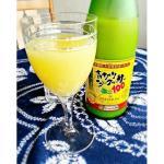 シークワーサー原液ジュースの賞味期限はどのくらい?効果的な飲み方も紹介