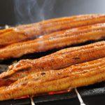 鰻の栄養成分や効果効能が凄い!肝の部分を食べると更に良いって本当?