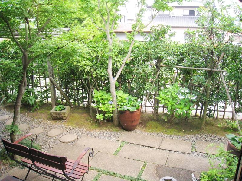 イロドリの庭緑と石畳