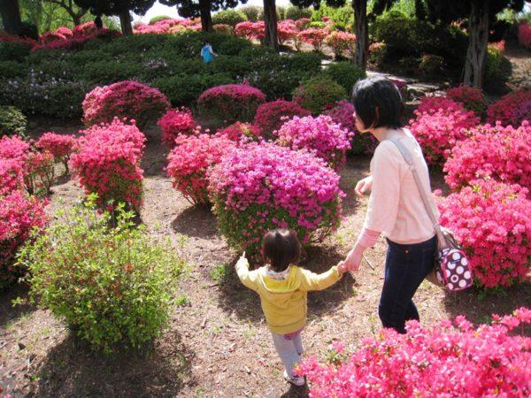 小室山公園のつつじの中を歩く女性と子供
