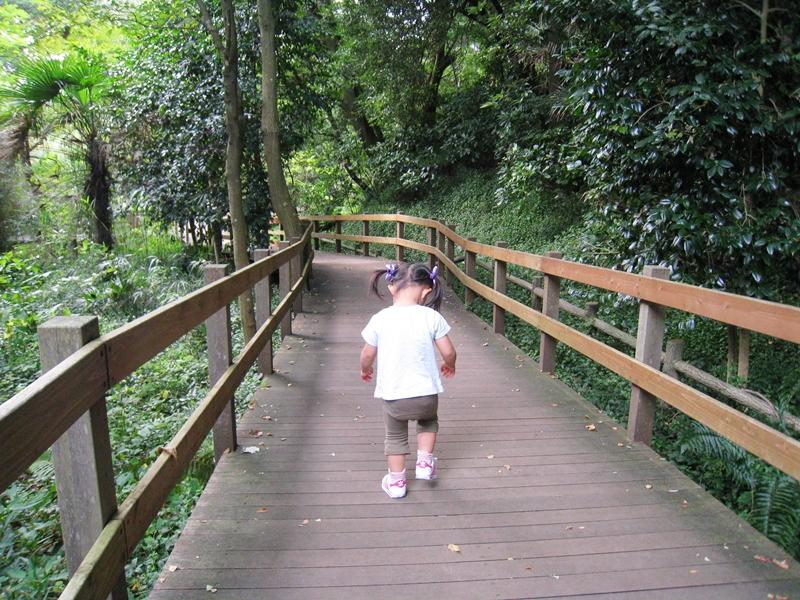 木の橋を歩いている子供周りには木々の緑