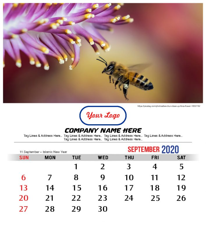 Free 2020 Calendar