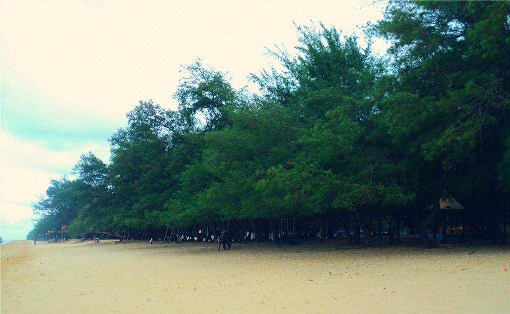 pesona wisata pantai karang jahe rembang beach