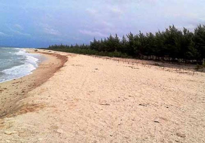 asal usul wisata pantai karang jahe rembang