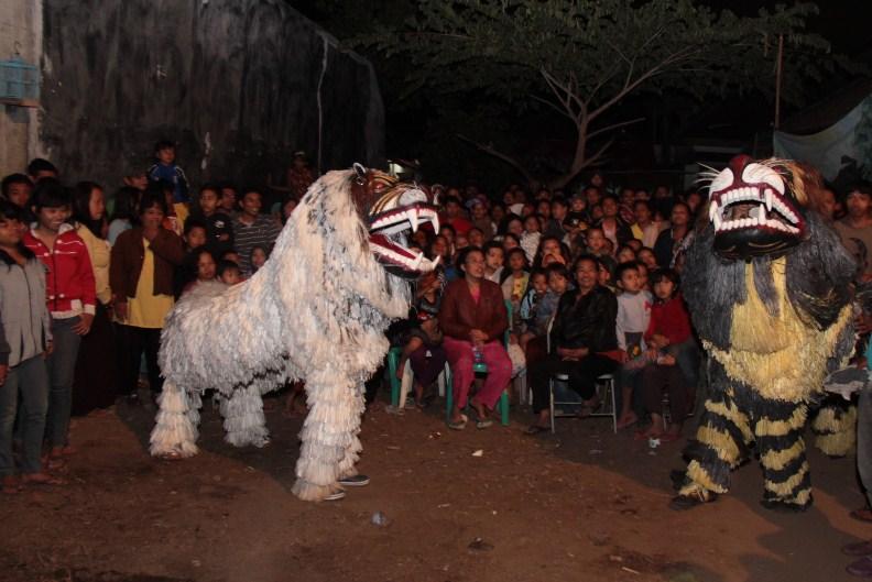 Pentas Seni Barongan Blora Jawa Tengah Lakon Singo Barong