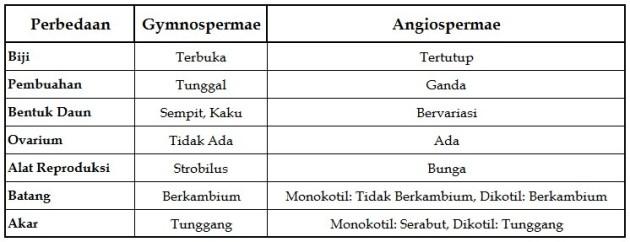 Penjelasan Perbedaan Gymnospermae dan Angiospermae dalam Bentuk Tabel
