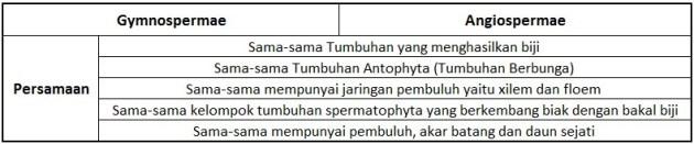 Penjelasan Persamaan Gymnospermae dan Angiospermae dalam Bentuk Tabel -masbidin.net