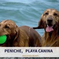 A Playa Peniche con nuestro Perro