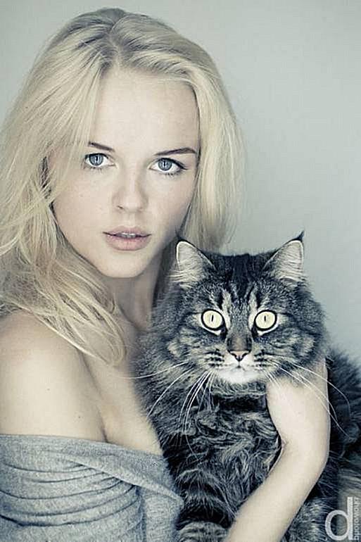 ¿Cuánto tarda un gato en adaptarse a una nueva casa?