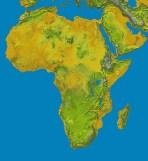 Harpagofito como antiinflamatorio natural: sur de África - HeelVet