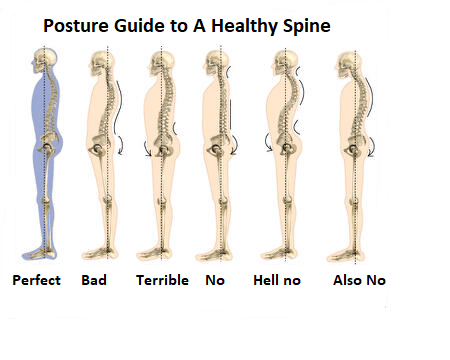 Some illustrations of what the spine will look like with poor posture as well as great body posture