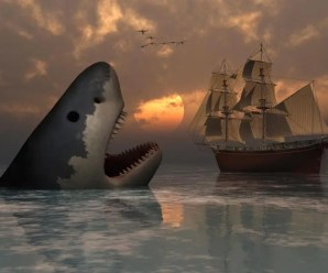 The Most Terrifying Predator of all Time: The Megalodon Shark