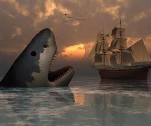 The Most Terrifying Predator of all Time: The Megalodon Shark