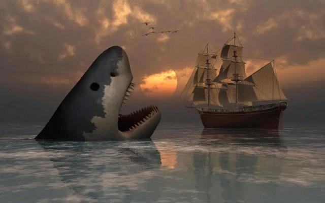 Megalodon Shark size
