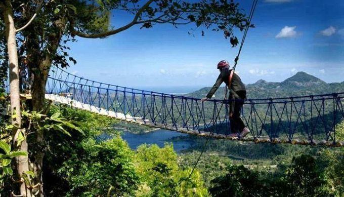 Kalibiru Jembatan Gantung Jogja