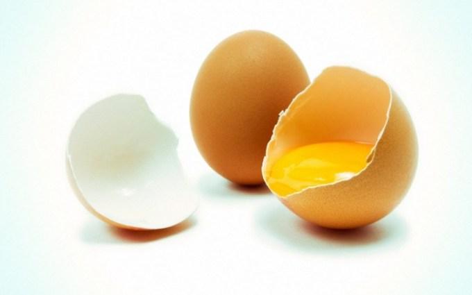 Telur ayam negeri sumber protein