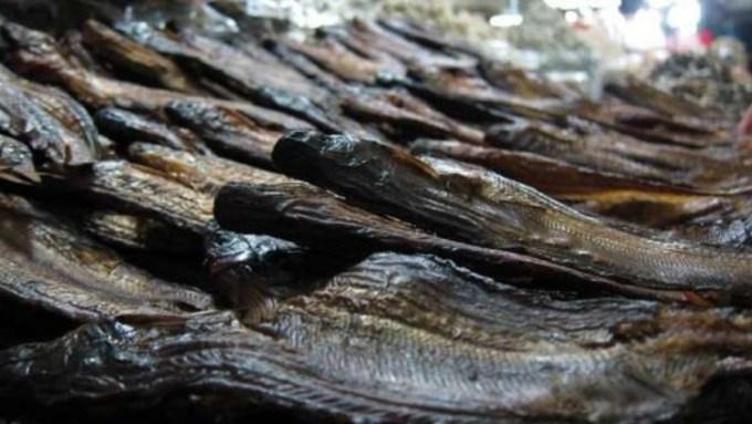 Ikan Selais Asap Makanan Khas Riau