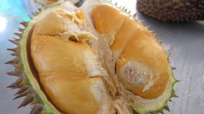 Kelezatan Durian Bawor