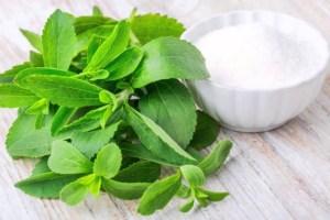 Tanaman stevia yang bisa dimanfaatkan sebagai gula untuk pemanis