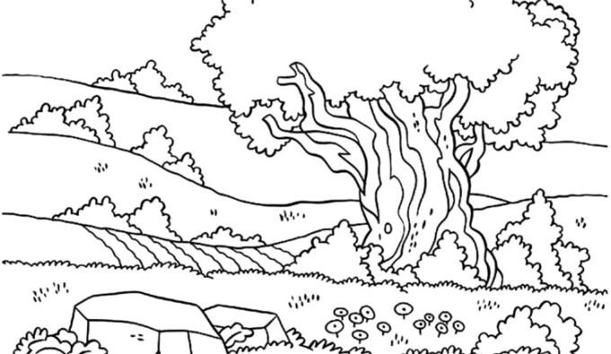Gambar Sketsa Pemandangan Alam Kota Desa Pantai Laut Hutan