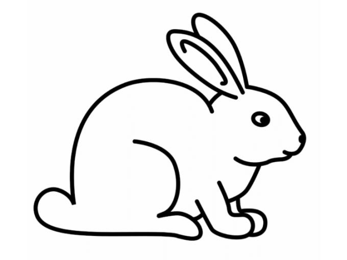 Sketsa kelinci
