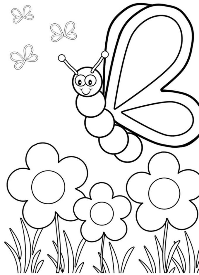Sketsa kupu kupu dan tumbuhan berbunga