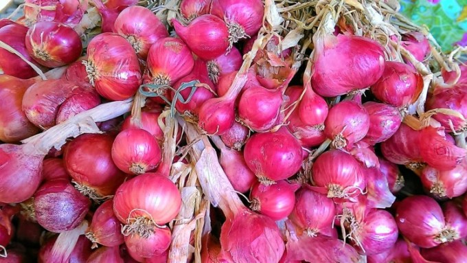 Bawang merah segar