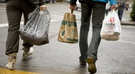 Prohibición de bolsas de plástico en el estado de Nueva York se reanudará esta semana