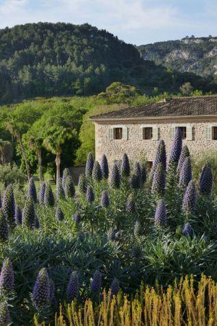 Mediterranean-estate-with-a-dream-garden-in-Mallorca