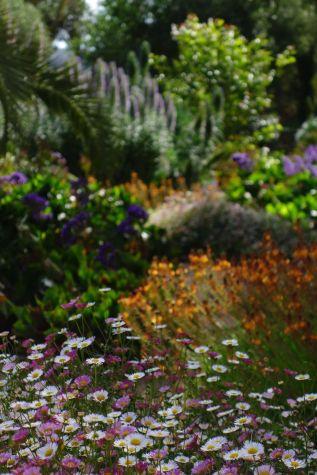 Spring-garden-in-Mallorca