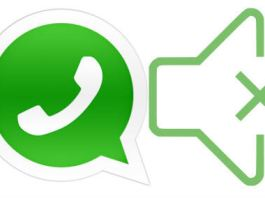 mute whatsapp notification