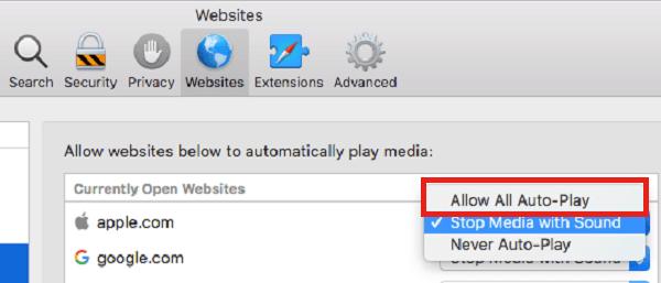 Allow Auto-Play exceptions for Safari
