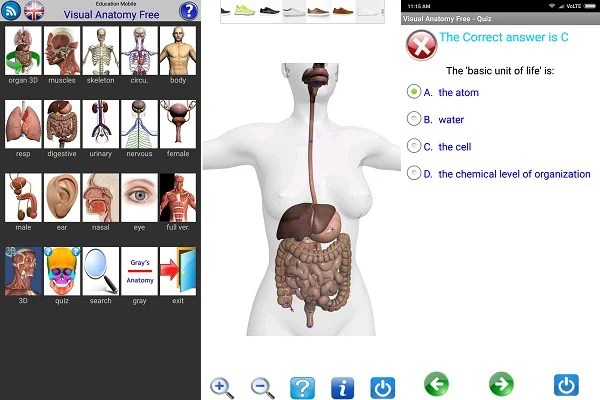 😱 3d anatomy software free download for android | 3D Horse