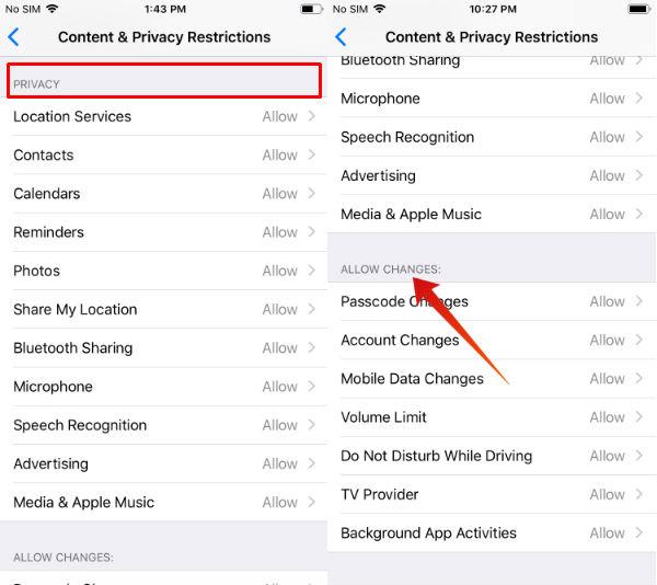 iPhone restrictions menu