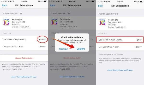 Cancel iOS App Subscription