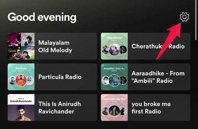 Open Spotify Settings