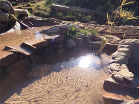 12 Agua cristalina, fuente de vida!