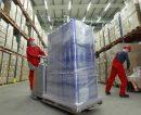 La Provincia cuenta con una nómina de empresas exportadoras y potencialmente exportadoras