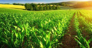 Junto a productores bonaerenses se definieron las prioridades para la Agroindustria que viene