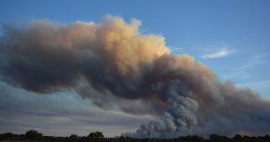 En la región centro, hay casi 3 millones de hectáreas en riesgo de incendios