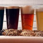 La agroindustria cervecera se consolida como el décimo complejo agroexportador de la Argentina
