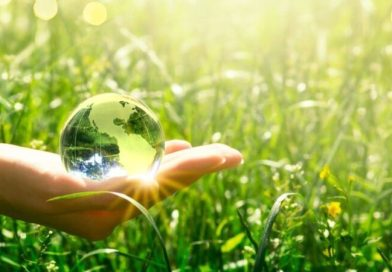 Ingenieros en recursos naturales y medioambiente: los profesionales del futuro (inmediato)
