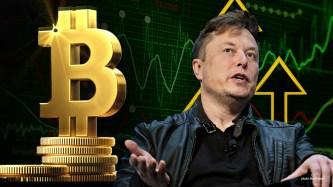 Elon Musk bitcoins